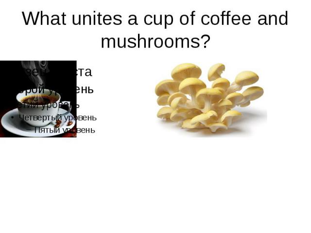 What unites a cup of coffee and mushrooms?