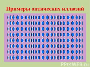 Примеры оптических иллюзий
