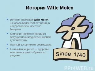История Witte Molen История компании Witte Molen началась более 270 лет назад в
