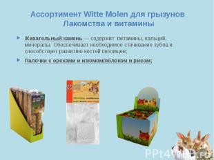 Ассортимент Witte Molen для грызунов Лакомства и витамины Жевательный камень — с