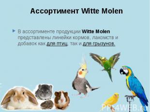 Ассортимент Witte Molen В ассортименте продукции Witte Molen представлены линейк