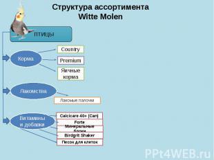 Структура ассортимента Witte Molen