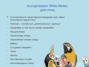 Ассортимент Witte Molen для птиц В ассортименте представлена продукция для самых