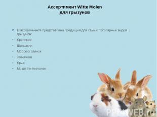 Ассортимент Witte Molen для грызунов В ассортименте представлена продукция для с
