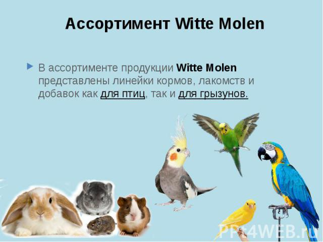 Ассортимент Witte Molen В ассортименте продукции Witte Molen представлены линейки кормов, лакомств и добавок как для птиц, так и для грызунов.