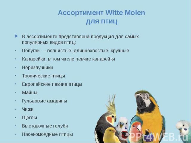 Ассортимент Witte Molen для птиц В ассортименте представлена продукция для самых популярных видов птиц: Попугаи — волнистые, длиннохвостые, крупные Канарейки, в том числе певчие канарейки Неразлучники Тропические птицы Европейские певчие птицы Майны…