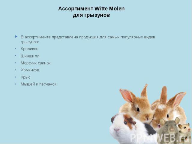 Ассортимент Witte Molen для грызунов В ассортименте представлена продукция для самых популярных видов грызунов: Кроликов Шиншилл Морских свинок Хомячков Крыс Мышей и песчанок