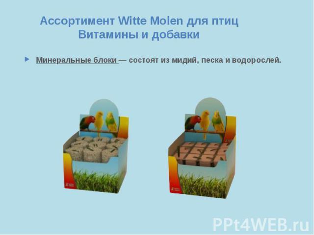 Ассортимент Witte Molen для птиц Витамины и добавки Минеральные блоки — состоят из мидий, песка и водорослей.