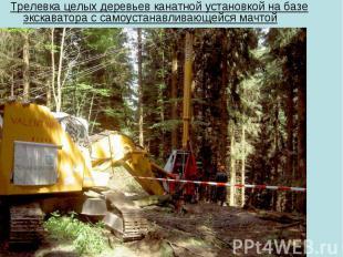 Трелевка целых деревьев канатной установкой на базе экскаватора с самоустанавлив