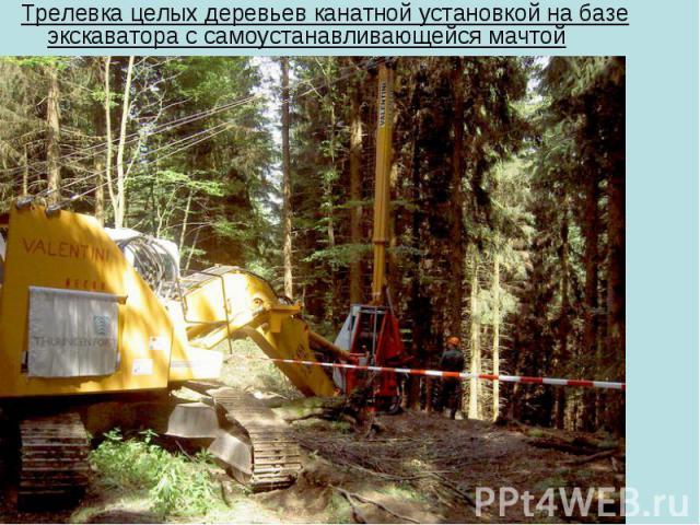 Трелевка целых деревьев канатной установкой на базе экскаватора с самоустанавливающейся мачтой