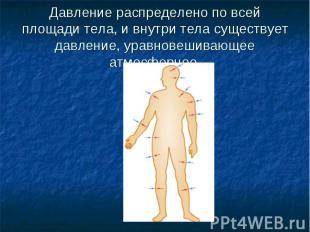 Давление распределено по всей площади тела, и внутри тела существует давление, у