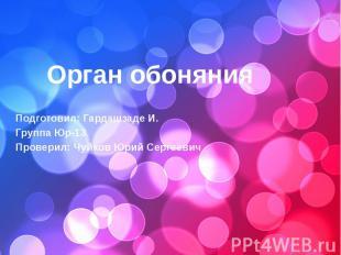 Подготовил: Гардашзаде И. Группа Юр-13 Проверил: Чуйков Юрий Сергеевич