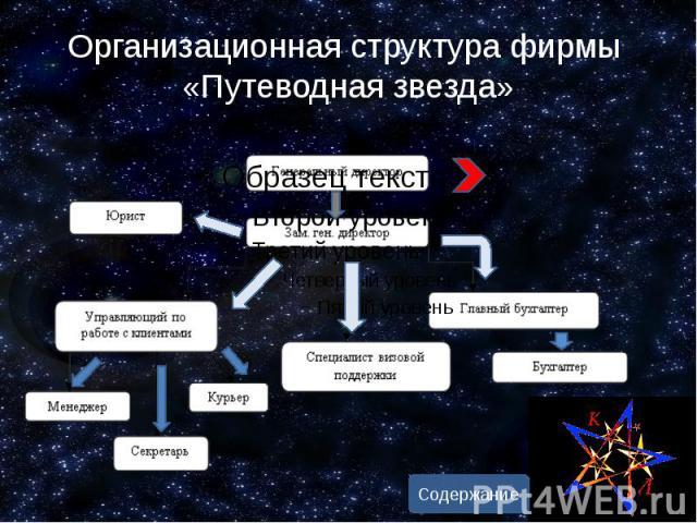 Организационная структура фирмы «Путеводная звезда»