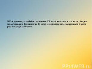 В Красную книгу Азербайджана занесено 108 видов животных, в том числе 14 видов м