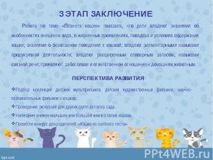 Работа по теме «Планета кошек» показала, что дети владеют знаниями об особенност