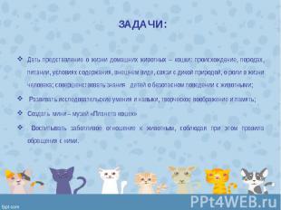 Дать представление о жизни домашних животных – кошки: происхождение, породах, пи