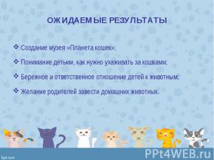 Создание музея «Планета кошек»; Создание музея «Планета кошек»; Понимание детьми