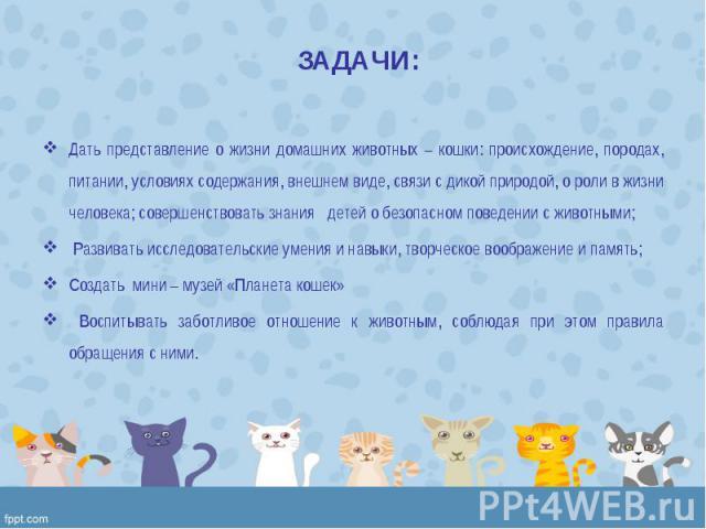 Дать представление о жизни домашних животных – кошки: происхождение, породах, питании, условиях содержания, внешнем виде, связи с дикой природой, о роли в жизни человека; совершенствовать знания детей о безопасном поведении с животными; …