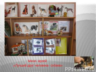 Мини- музей «Лучший друг человека- собака»
