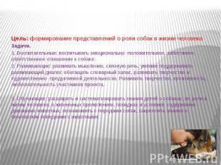 Цель: формирование представлений о роли собак в жизни человека Задачи. 1. Воспит