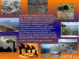 Интенсивное загрязнение воздуха, воды и почв, деградация животного и растительно