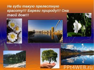 Не губи такую прелестную красоту!!! Береги природу!!! Она твой дом!!!