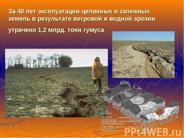 За 40 лет эксплуатации целинных и залежных земель в результате ветровой и водной эрозии утрачено 1,2 млрд. тонн гумуса.
