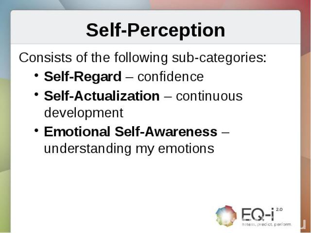 Self-PerceptionConsists of the following sub-categories:Self-Regard – confidenceSelf-Actualization – continuous developmentEmotional Self-Awareness – understanding my emotions