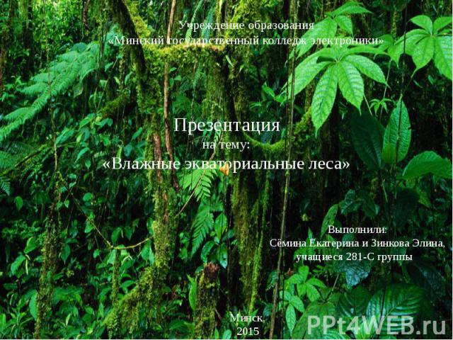 Презентация на тему: «Влажные экваториальные леса»