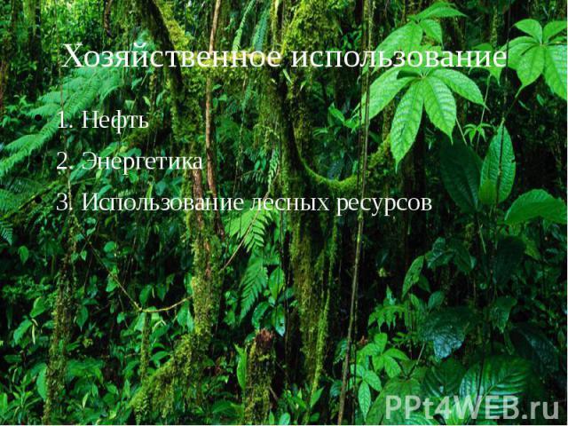 Хозяйственное использование 1. Нефть 2. Энергетика 3. Использование лесных ресурсов