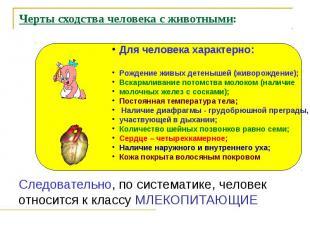 Черты сходства человека с животными: Следовательно, по систематике, человек отно