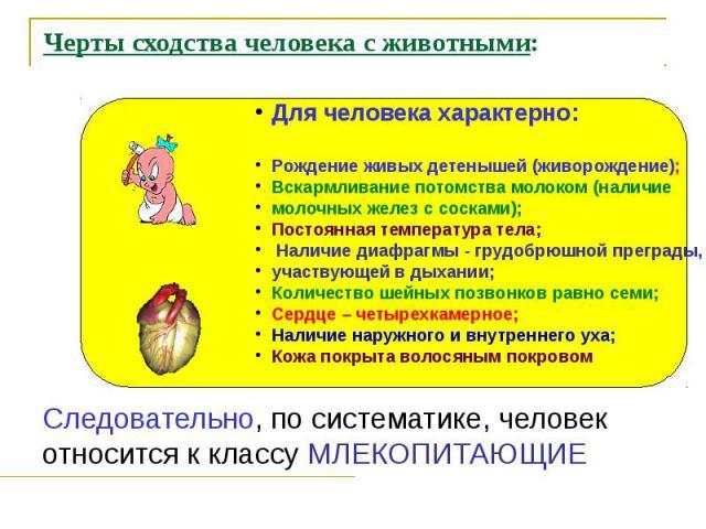 Черты сходства человека с животными: Следовательно, по систематике, человек относится к классу МЛЕКОПИТАЮЩИЕ