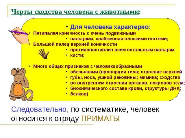Черты сходства человека с животными: Следовательно, по систематике, человек относится к отряду ПРИМАТЫ
