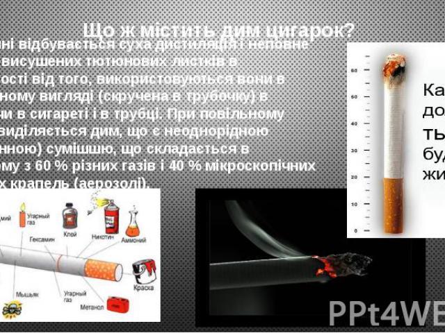 Що ж містить дим цигарок? При курінні відбувається суха дистиляція і неповне згоряння висушених тютюнових листків в незалежності від того, використовуються вони в натуральному вигляді (скручена в трубочку) в сигареті чи в сигареті і в трубці. При по…