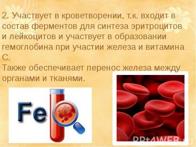 2. Участвует в кроветворении, т.к. входит в состав ферментов для синтеза эритроцитов и лейкоцитов и участвует в образовании гемоглобина при участии железа и витамина С.Также обеспечивает перенос железа между органами и тканями.2. Участвует в кроветв…