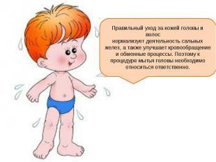 Правильный уход за кожей головы и волос нормализует деятельность сальных желез,