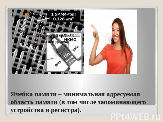 Ячейка памяти – минимальная адресуемая область памяти (в том числе запоминающего устройства и регистра).