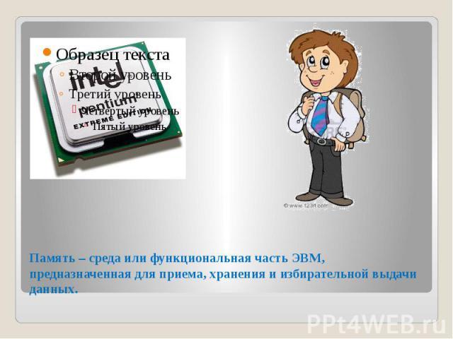 Память – среда или функциональная часть ЭВМ, предназначенная для приема, хранения и избирательной выдачи данных.