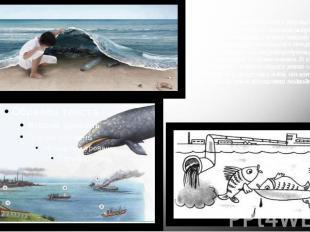 Морские воды загрязняются в результате захоронения различных отходов выброса мус