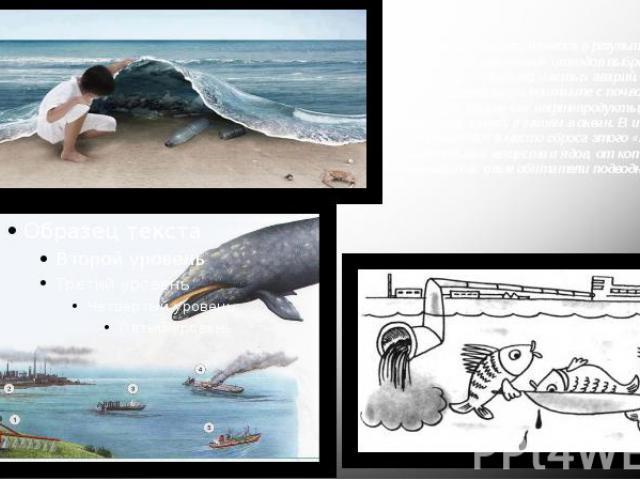 Морские воды загрязняются в результате захоронения различных отходов выброса мусора и нечистот с кораблей, частых аварий. Не распадающиеся при контакте с почвой химические вещества, такие как нефтепродукты, удобрения попадают в реки, а затем в океан…