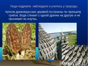 Купола древнерусских церквей построены по принципу грибов. Вода стекает с одной
