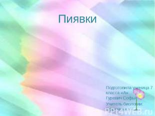 Пиявки Подготовила ученица 7 класса «А» Гуревич Софья Учитель биологии: Ефременк
