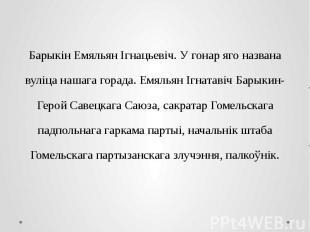 Барыкін Емяльян Ігнацьевіч. У гонар яго названа вуліца нашага горада. Емяльян Іг