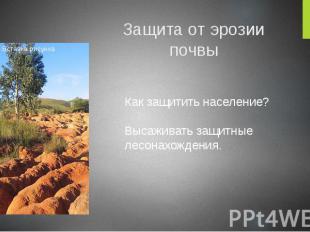 Защита от эрозии почвы Как защитить население? Высаживать защитные лесонахождени