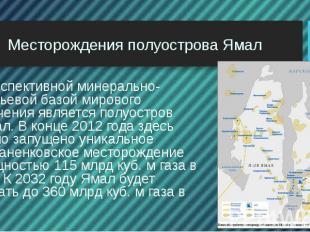 Месторождения полуострова Ямал Перспективной минерально-сырьевой базой мирового