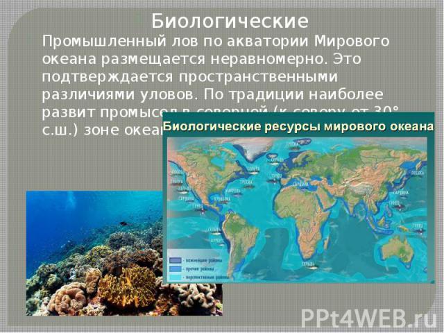 Биологические Биологические Промышленный лов по акватории Мирового океана размещается неравномерно. Это подтверждается пространственными различиями уловов. По традиции наиболее развит промысел в северной (к северу от 30° с.ш.) зоне океана.