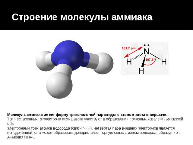 Строение молекулы аммиака Молекула аммиака имеет форму тригональной пирамиды с атомом азота в вершине. Три неспаренных p-электрона атома азота участвуют в образовании полярных ковалентных связей с 1s электронами трёх атомов водорода (связи N−H…