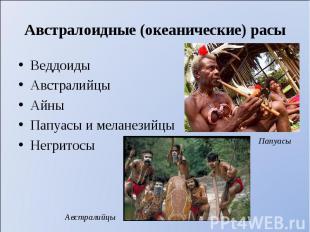 Веддоиды Веддоиды Австралийцы Айны Папуасы и меланезийцы Негритосы