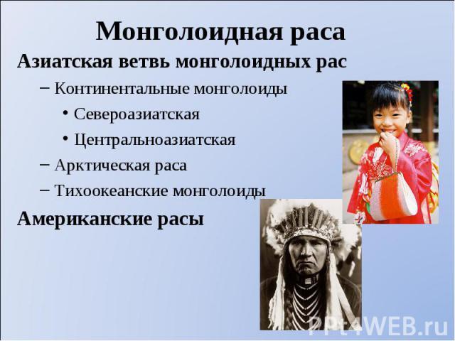 Азиатская ветвь монголоидных рас Азиатская ветвь монголоидных рас Континентальные монголоиды Североазиатская Центральноазиатская Арктическая раса Тихоокеанские монголоиды Американские расы