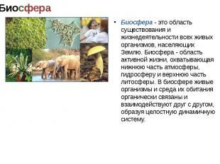 Биосфера - область активной жизни, охватывающая нижнюю часть атмосферы, гидросфе